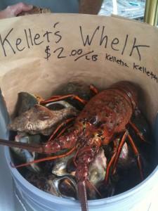 IMG 0453 225x300 Santa Monica Farmers Market has a new treat   Live Lobster!
